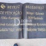 Kitabe Granit Mezar Baş Taşı 8